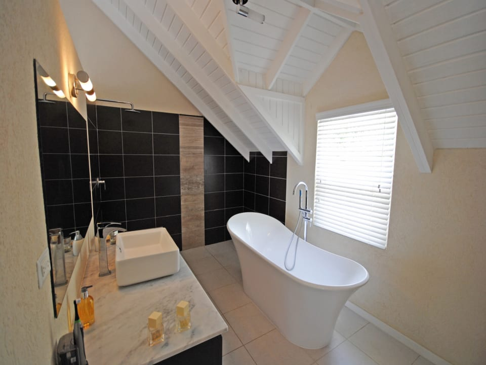 Spacious master bathroom with tub and shower