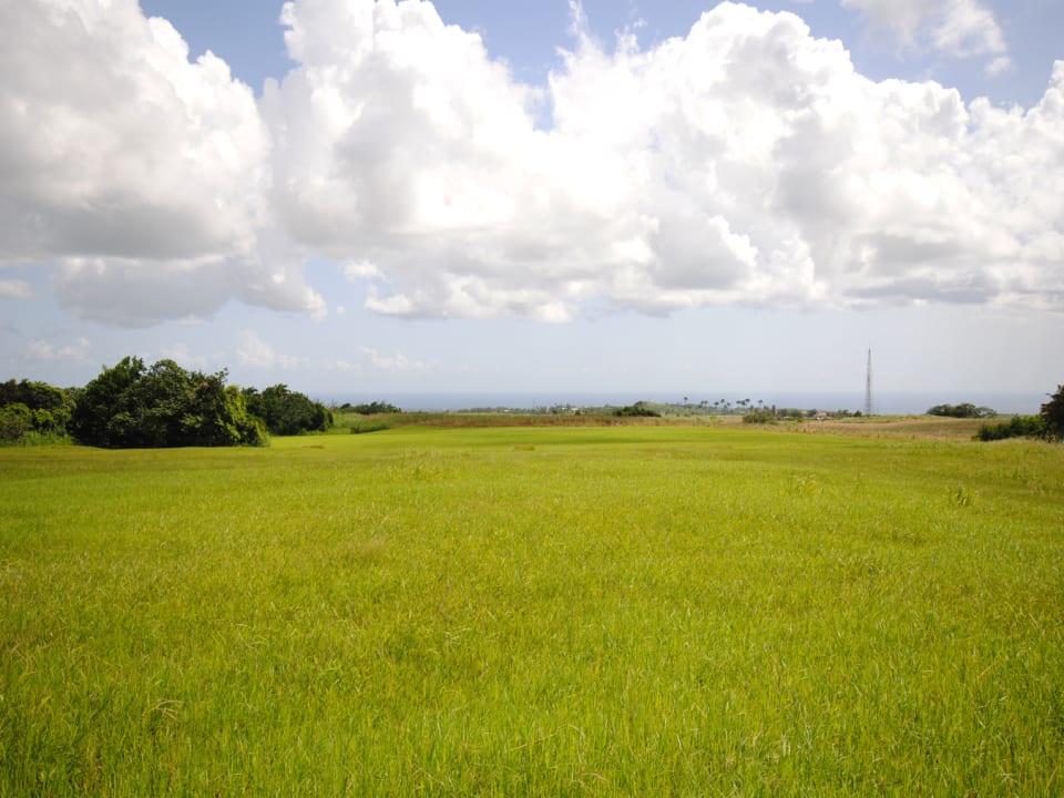Lands of Lion Castle Plantation with sea views