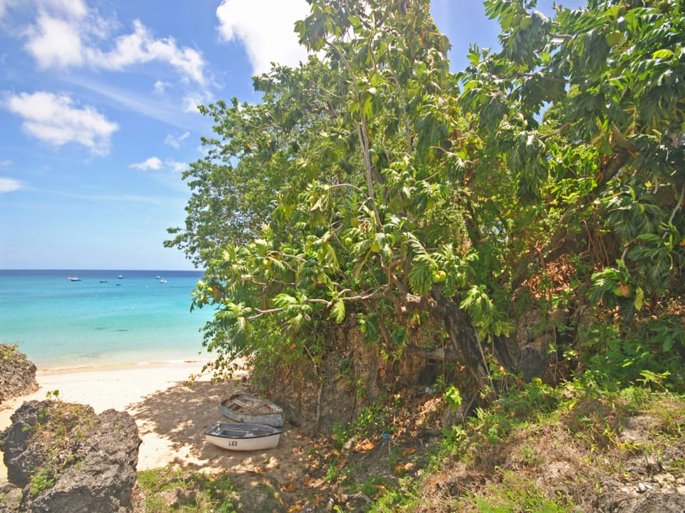 Around the Bay access to beachfront