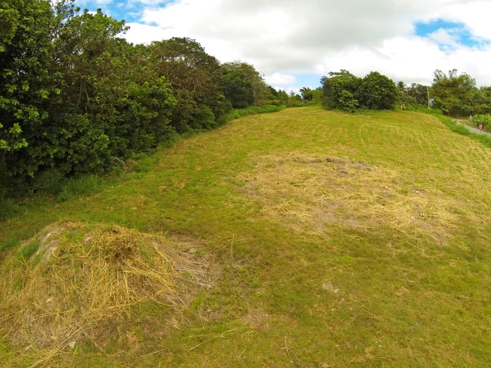 Mount Wilton