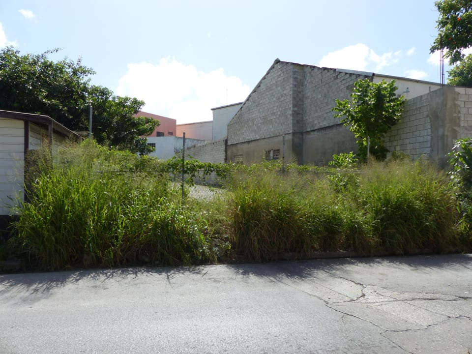 View of the lot from Reed Street - chain link fencing