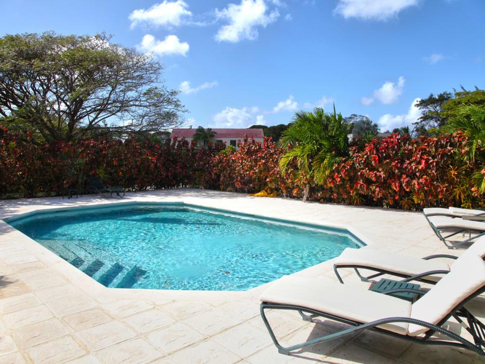 Pool & Lounge Area