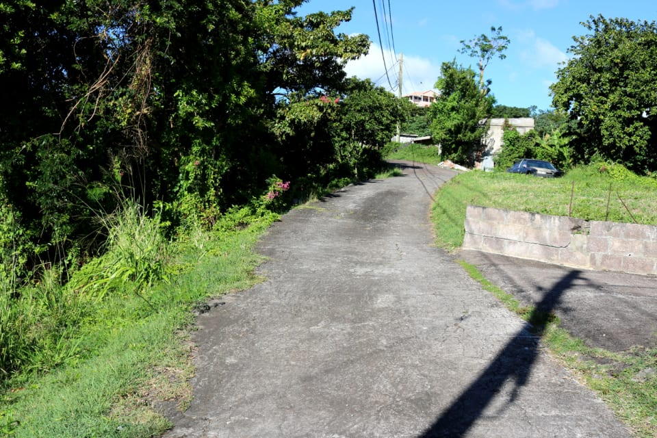 View of access road.
