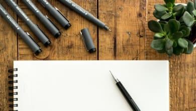 Photo of 13 Best Script Fonts for Branding and Logo Design