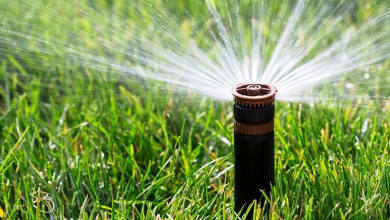 Photo of Top 5 benefits of using the smart irrigation system