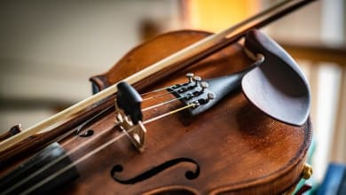Photo of Music School for Violin lessons in Mississauga
