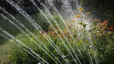 Photo of Get Smart Irrigation Services in St. Augustine