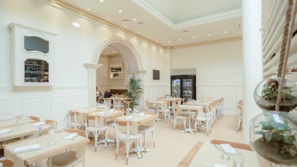 Ristoro Della Salute In Rome Restaurant Reviews Menu And Prices Thefork