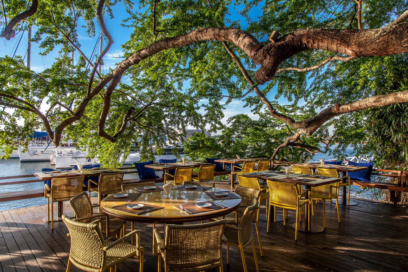 Lafayette em Salvador (SA) - Preço, endereço, menu, reserva e horário de  funcionamento do restaurante