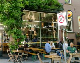 Gambrinus, Amsterdam