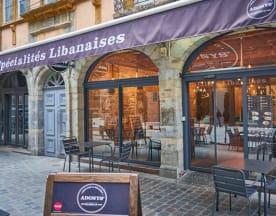 Adonys, Lyon