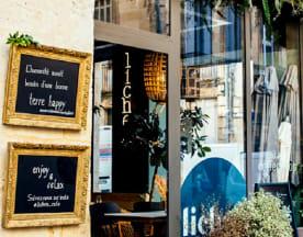 Lichen Café, Bordeaux