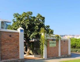 A Fábrica Santa Cristina, Oleiros