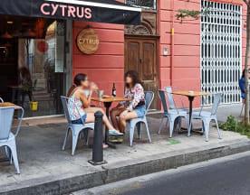 Cytrus Ruzafa, Valencia