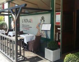 Oniwa, Lausanne