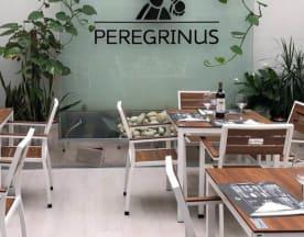 Peregrinus Pontevedra, Pontevedra