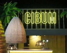 Cibum, Alicante (Alacant)