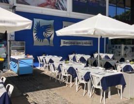 Senhor Peixe - Restaurante Marisqueira, Lisbon