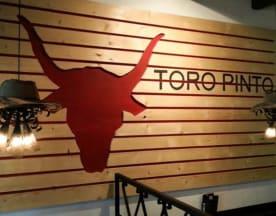 Toro Pinto, Heerenveen