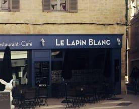 Le Lapin Blanc, Avignon