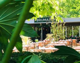 Brumaire, Saint-Cloud