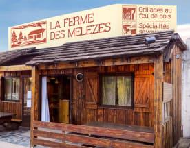 La Ferme des Mélèzes, Noiseau