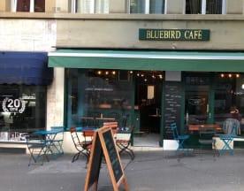 Bluebird Café, Lausanne