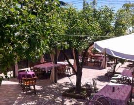 Il Giardino dei Sapori, Nichelino