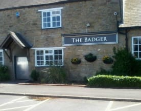 The Badger - Newcastle, Newcastle upon Tyne