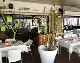 Le Satyn's, Toulon