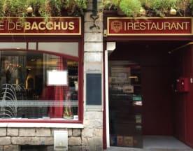 La Bedaine De Bacchus, Lille