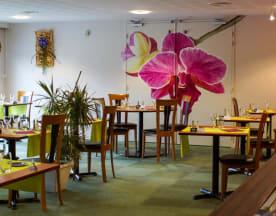 L'Orchidée, Les Herbiers