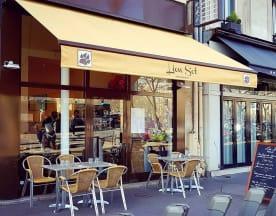 Lion Sot, Paris