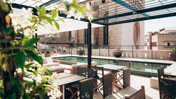 Vista terraza - Singular Rooftop Terrace - Sant Francesc Hotel, Palma de Mallorca