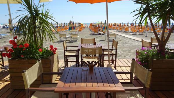 OASIS Beach/Pub, Milano Marittima