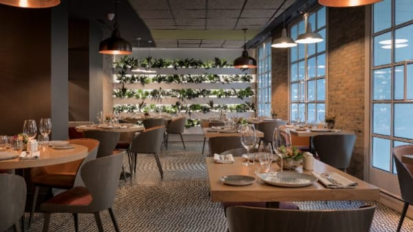 Vista sala - BLoved by Eboca Restaurants, Madrid