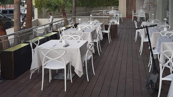 Botanico Ibiza, Eivissa