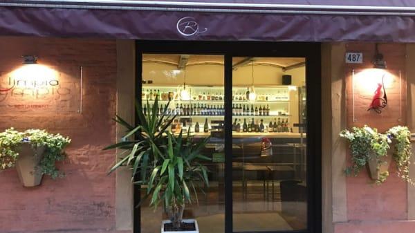Entrata - Olimpia, Modena
