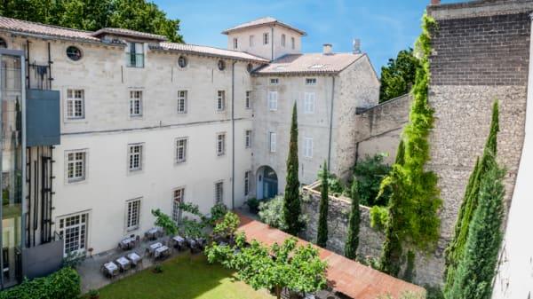 Jardin - Le Saint-Louis - Le Saint Louis - Restaurant & Bar, Avignon