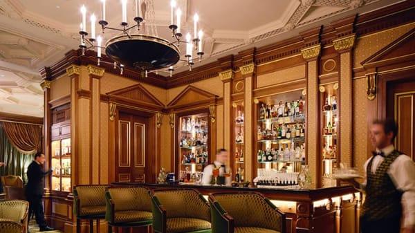 The Library Bar at The Lanesborough, London