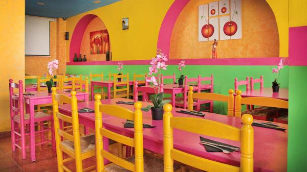 sala con muchos colores - Burro Chilango, Barcelona
