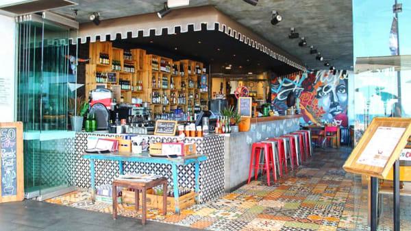 Bar - Gringo Loco Cantina, Surfers Paradise (QLD)