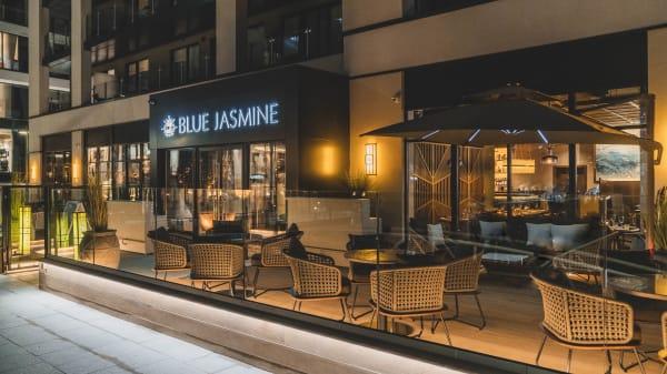 Blue Jasmine, Southampton
