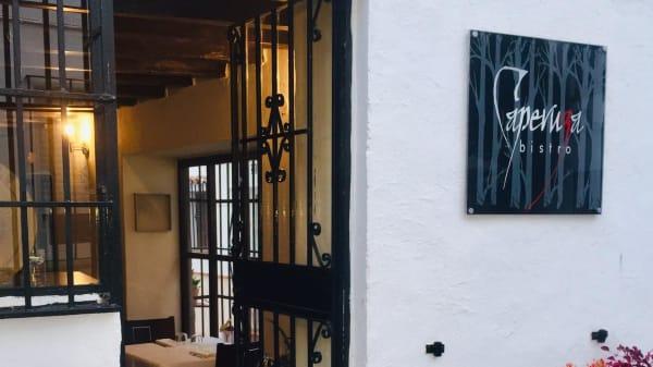 Entrada - Caperuza Bistro, Marbella