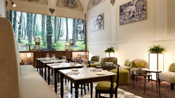 Sala del ristorante - Savini Tartufi Truffle Restaurant Firenze, Firenze