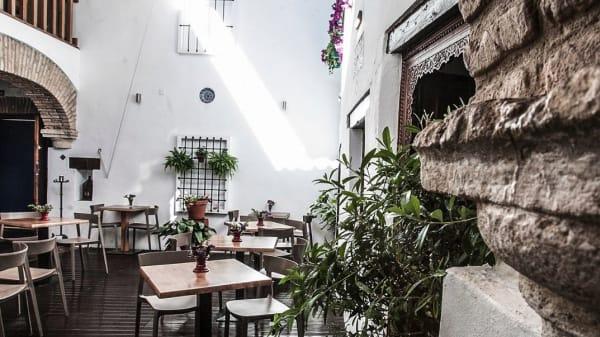 terraza - Casa Mazal-Plaza Maimonides, Córdoba
