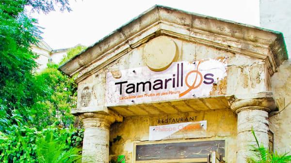 Façade - Tamarillos - Atelier des Fleurs Comestibles, Montpellier