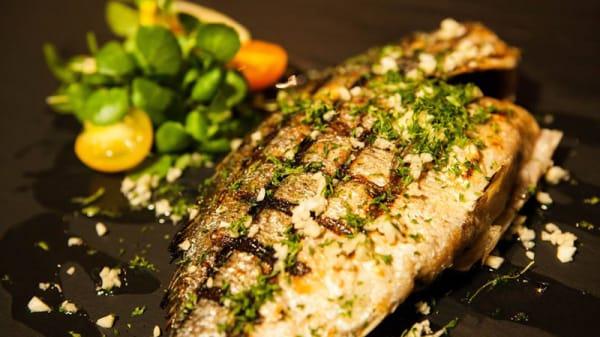 Restaurant Zagreb A Anvers Menu Avis Prix Et Reservation