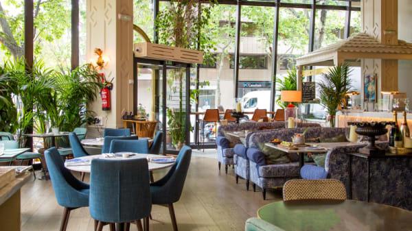 Vista Sala - Sushita Café - Miguel Ángel, Madrid