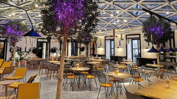 Vista de la Sala - Café de la Plaza, Madrid